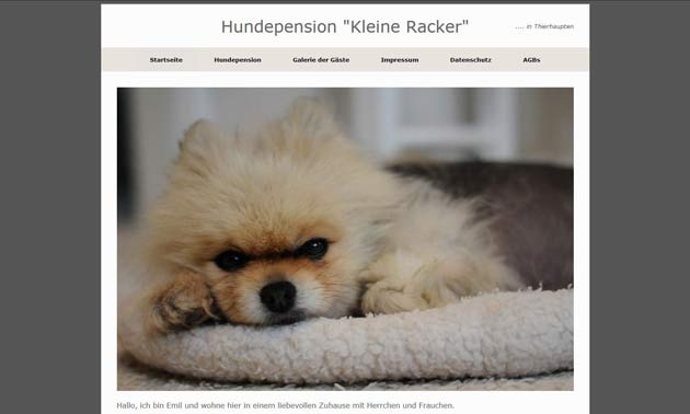 https://www.hundepension-kleine-racker.de